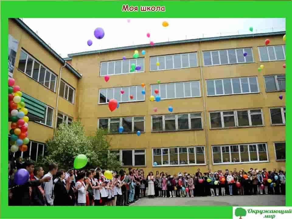 Моя школа в Краснодаре