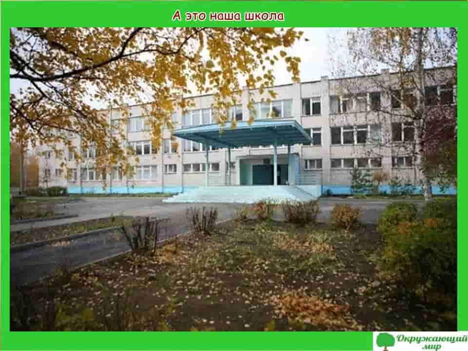 школа в Нижнем Новгороде