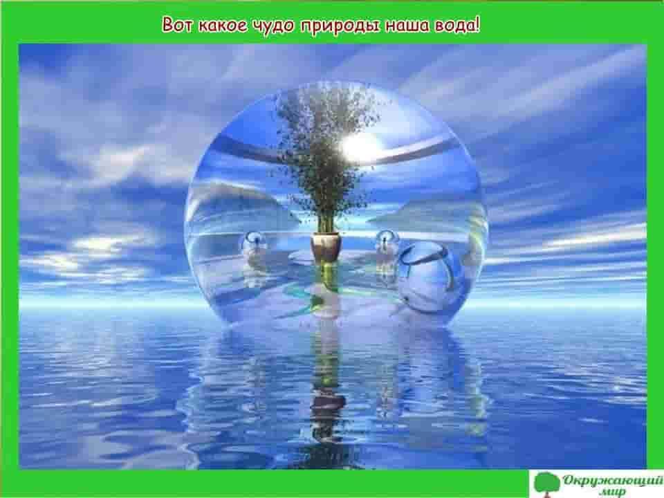 Какое чудо природы наша вода