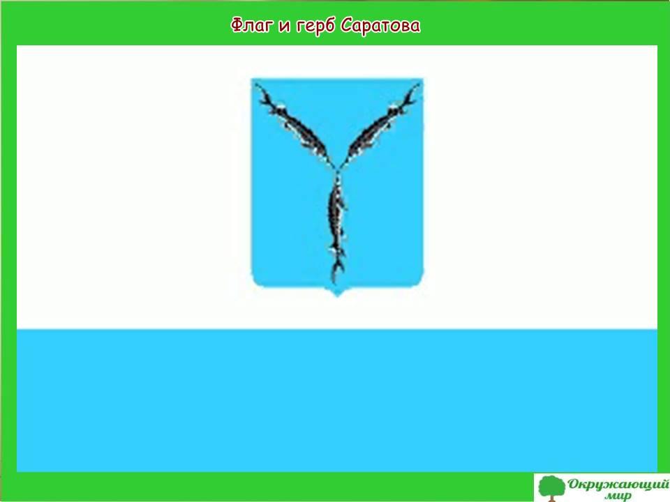 Флаг и герб Саратова