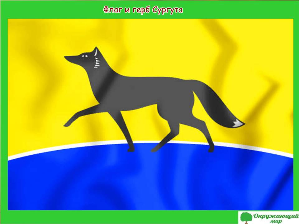 Флаг и герб Сургута