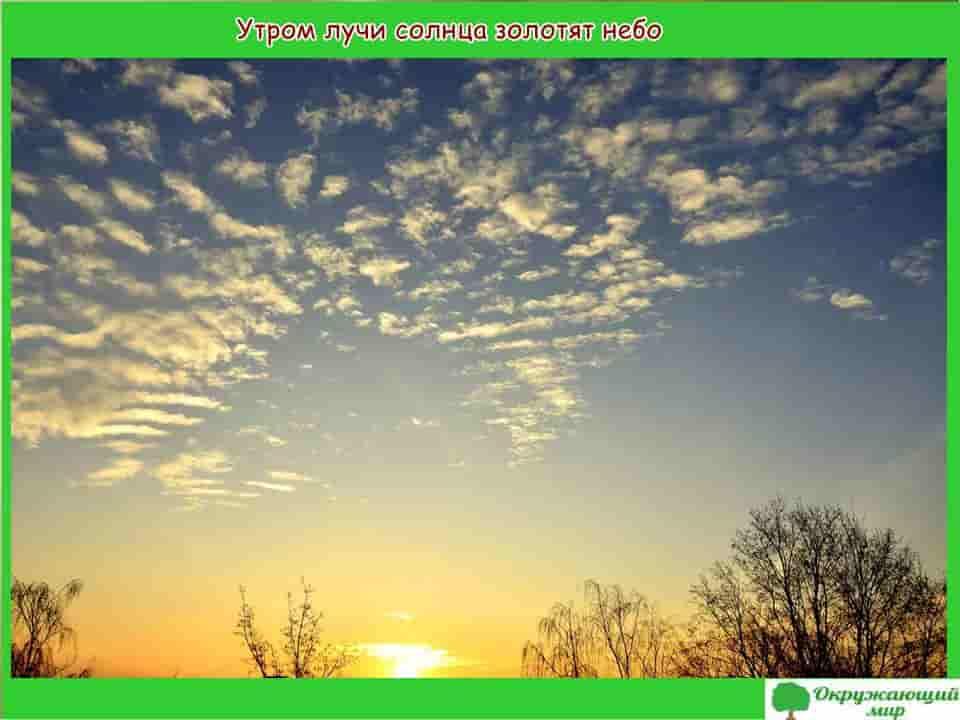 Утром лучи солнца золотят небо