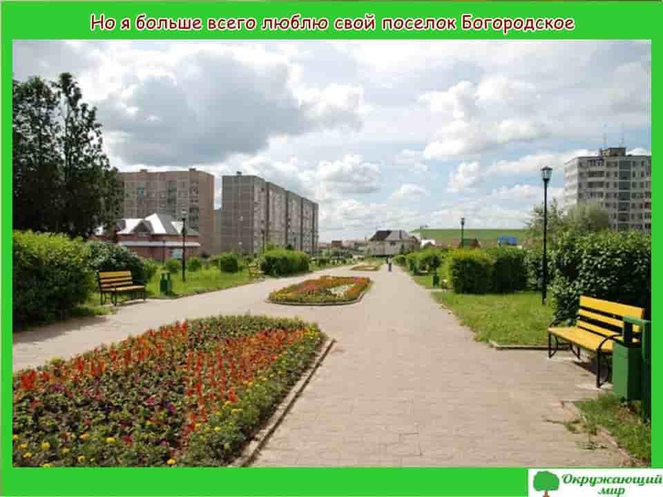 Окружающий мир 1 класс 1 часть. Проект «Моя малая Родина — Московская область» 6