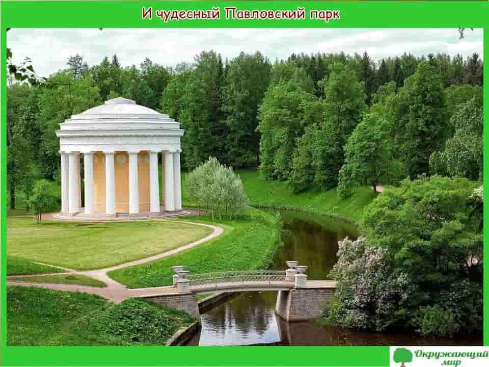 И чудесный Павловский парк