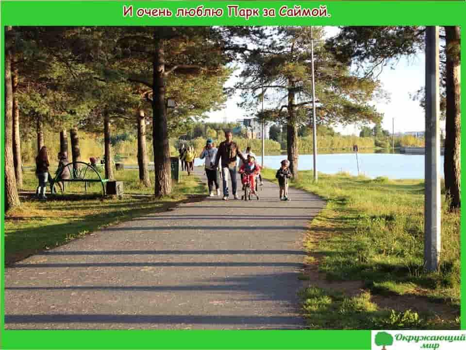 Парк за Саймой в Сургуте