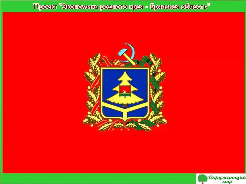 Проект Экономика Брянской области