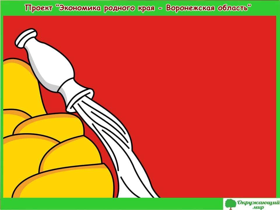 Проект Экономика Воронежской области