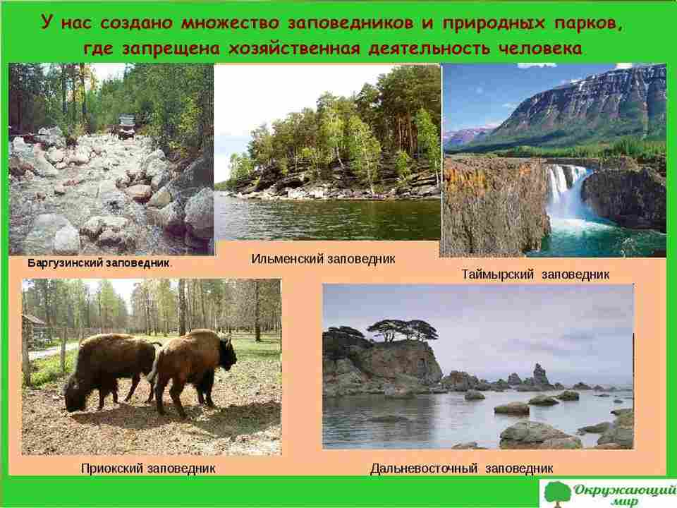 Заповедники и природные парки России