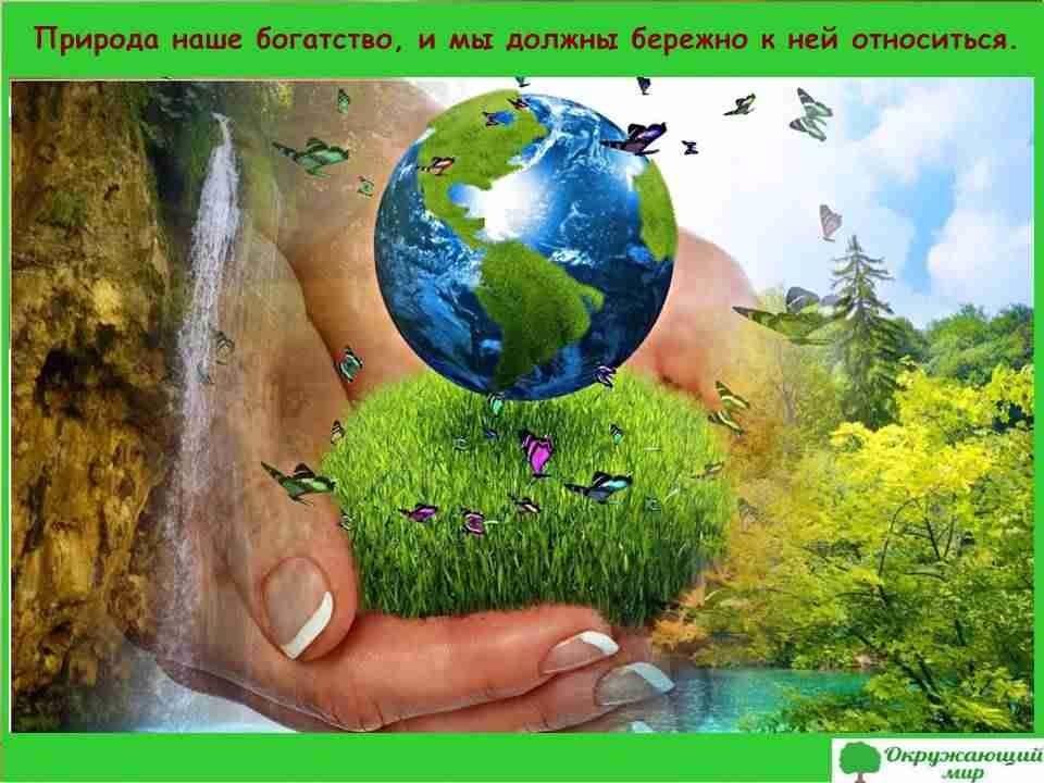 Природа наше богатство