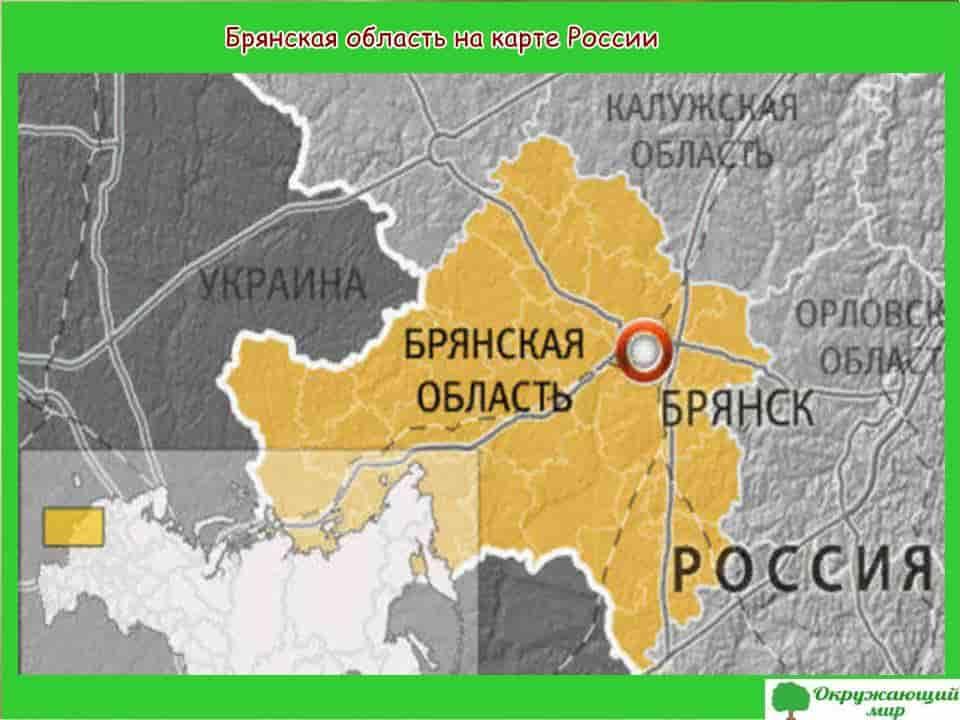 Брянская область на карте России