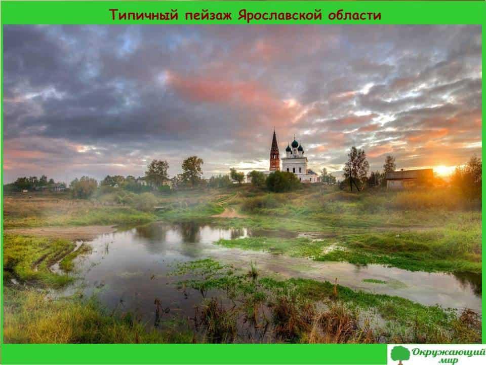 Типичный пейзаж Ярославской области