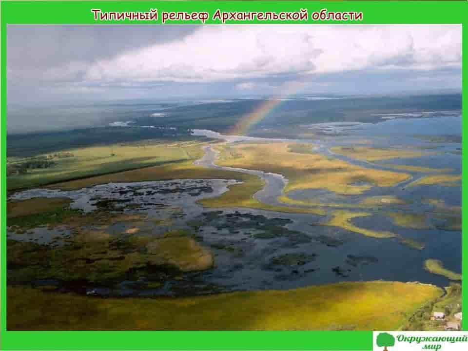 Типичный рельеф Архангельской области