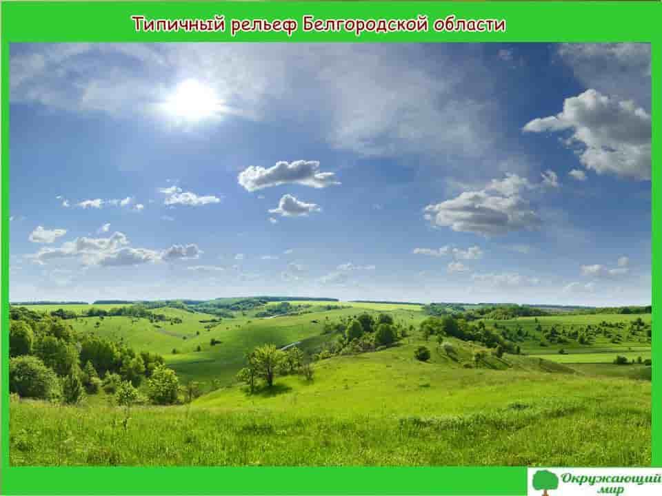 Типичный рельеф Белгородской области