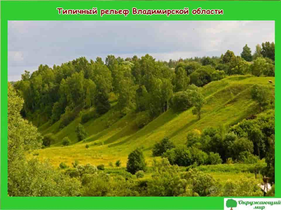 Типичный рельеф Владимирской области