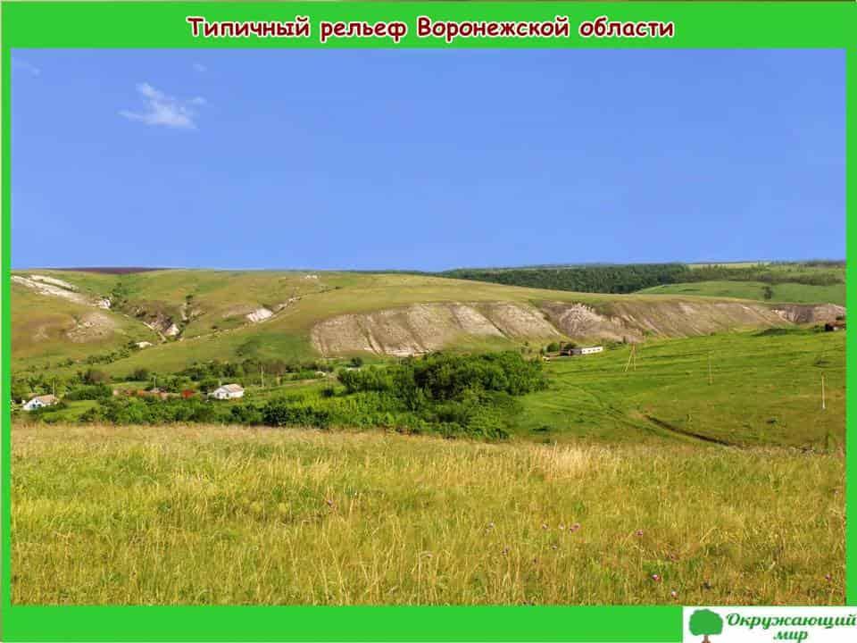 Типичный рельеф Воронежской области