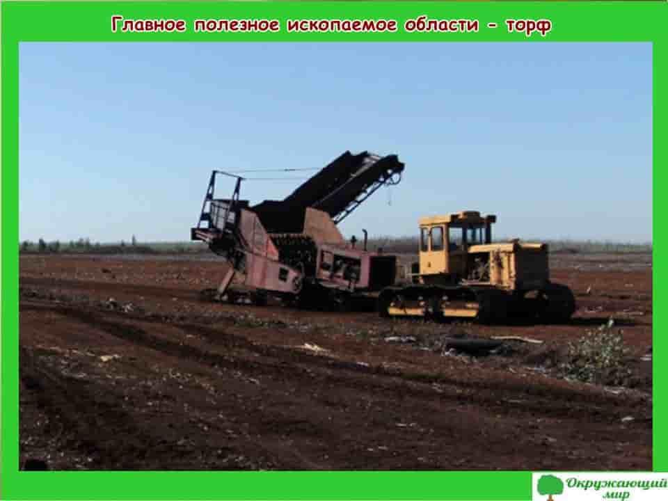 Главное полезное ископаемое Владимирской области торф