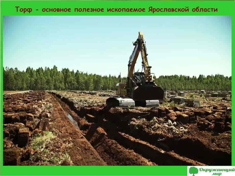 Торф полезное ископаемое Ярославской области