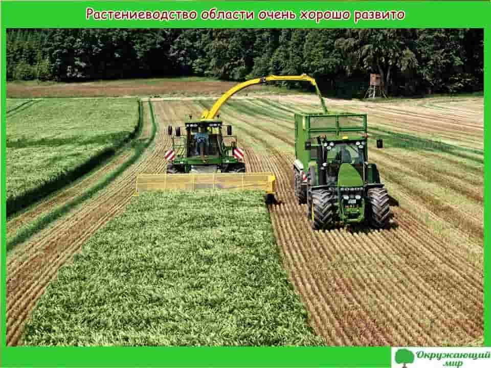 Растениеводство Белгородской области