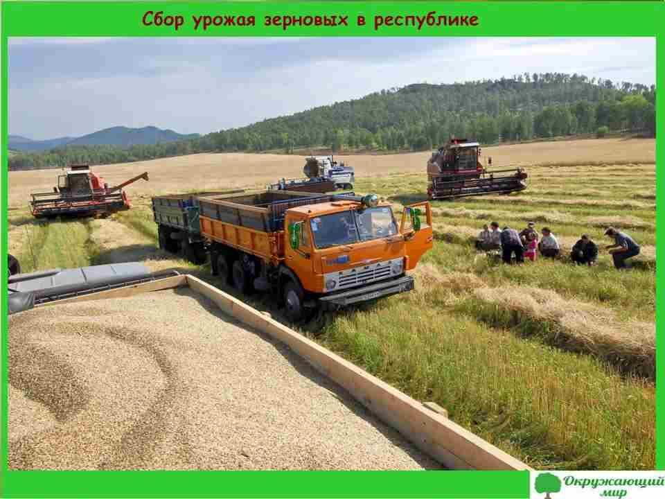 """Проект """"Экономика родного края. Республика Хакасия"""""""