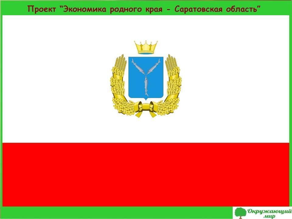 1. Проект Экономика родно края Саратовская область