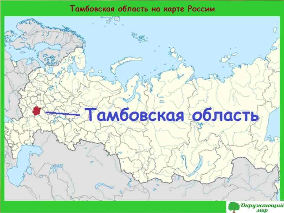 2. Тамбовская область на карте России