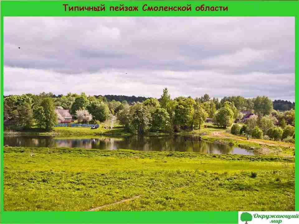 3. Типичный пейзаж Смоленской области