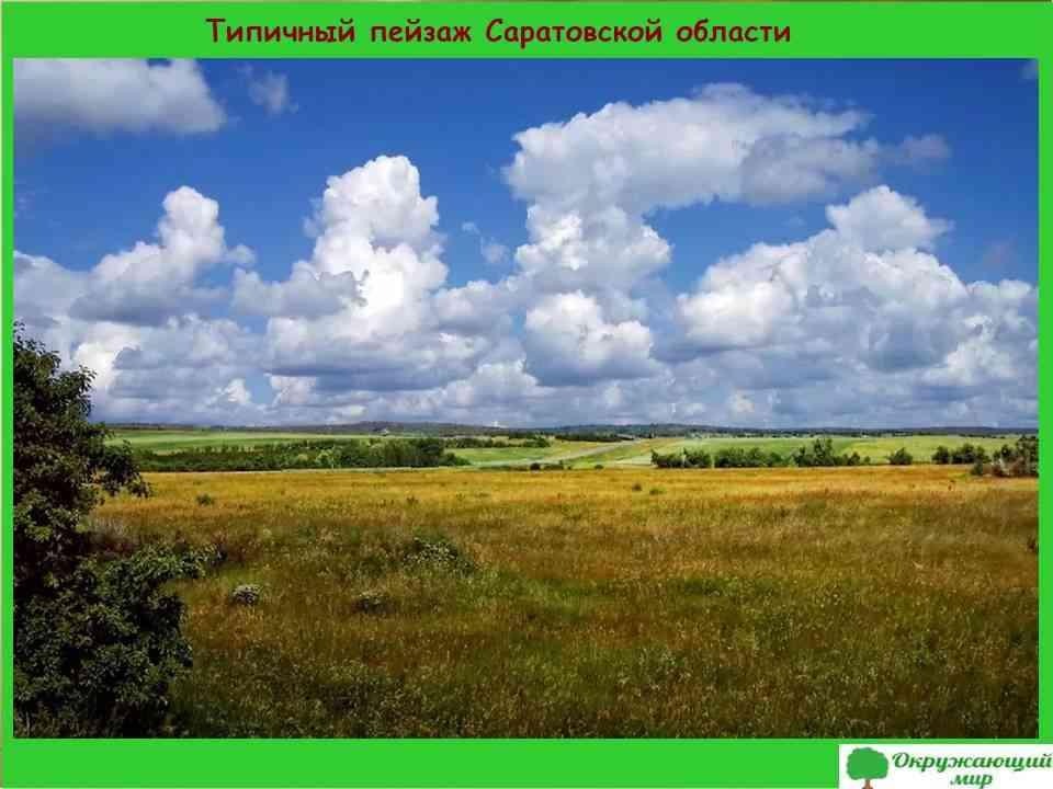3. Типичный пейзаж Саратовской области