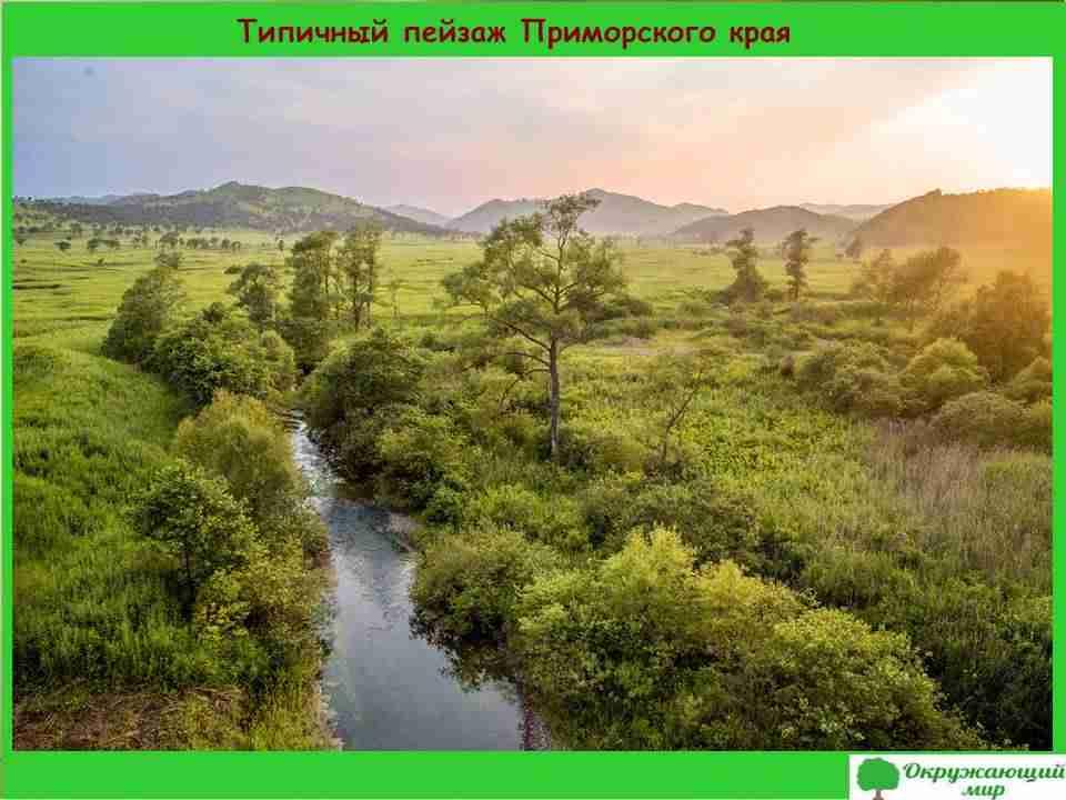 3. Типичный пейзаж Приморского края