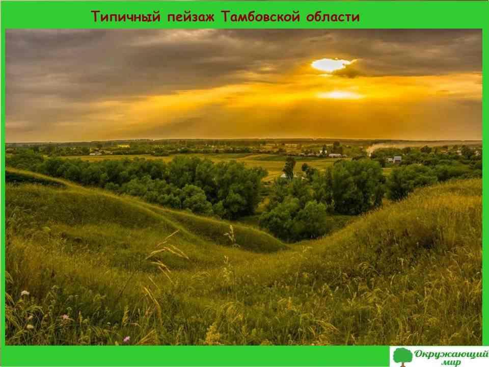 3. Типичный пейзаж Тамбовской области