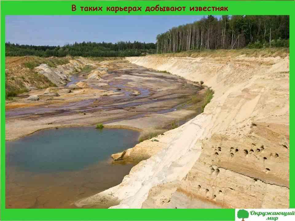4. В карьерах Смоленской области добывают известняк