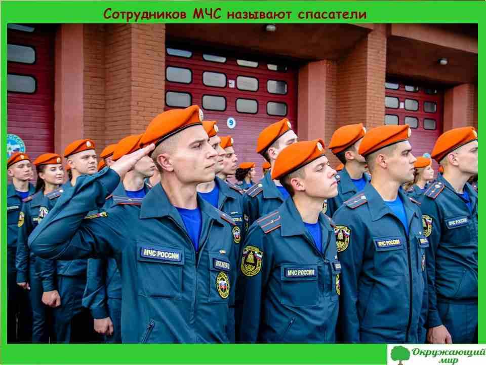 Сотрудников МЧС называют спасатели