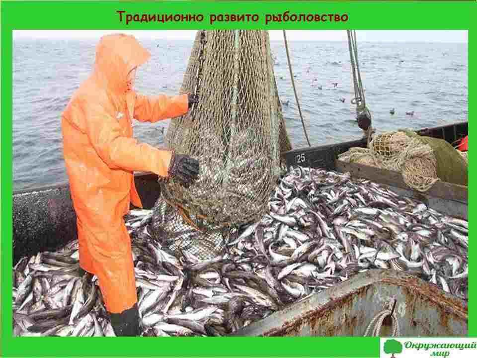Традиционно развито рыболовство