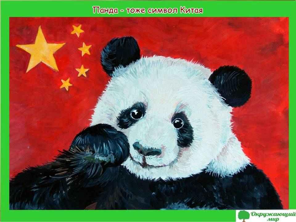 """Проект """"Страны мира - Китай"""""""