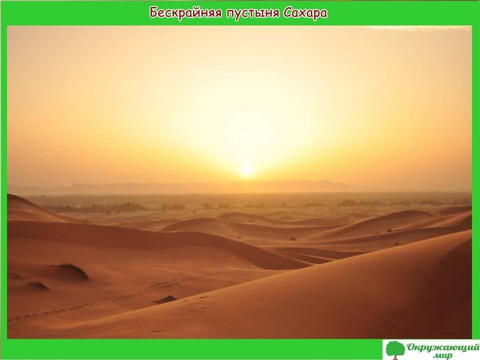 """Проект """"Страны мира - Египет"""""""