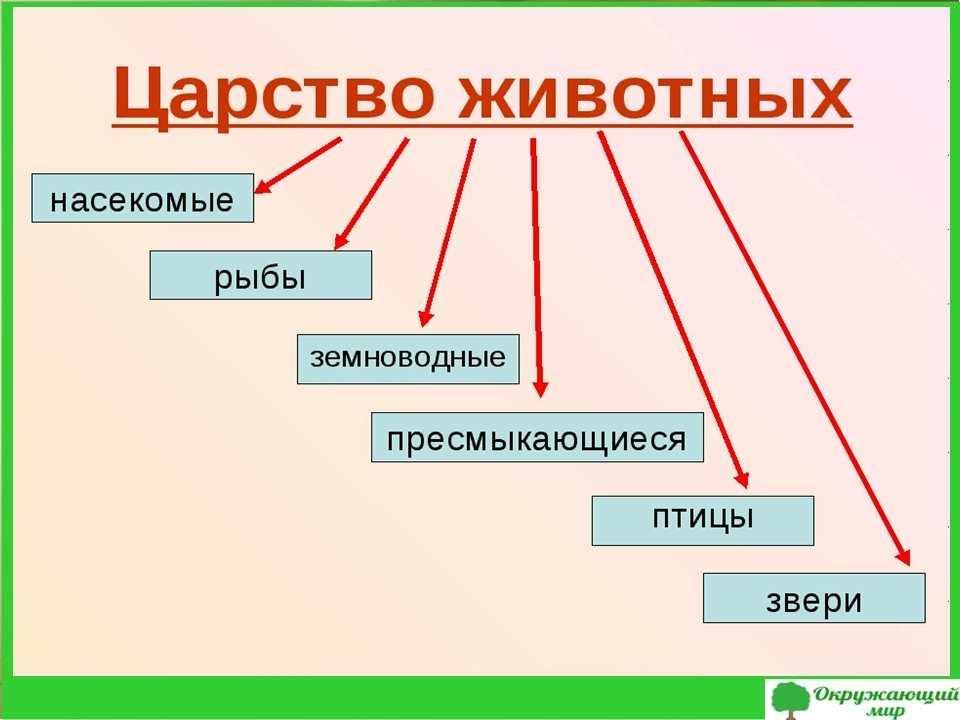 "Проект ""Царства природы"", 3 класс"