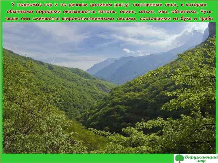 "Проект ""Разнообразие природы. Кабардино-Балкария"" 3 класс"