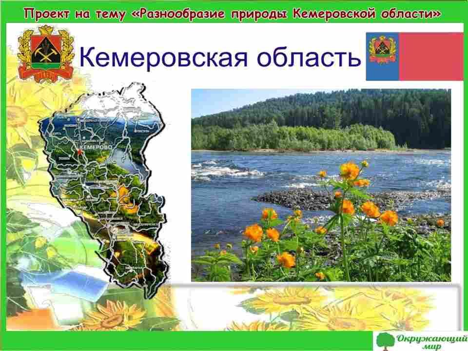 """Проект """"Разнообразие природы Кемеровской области"""" 3 класс"""