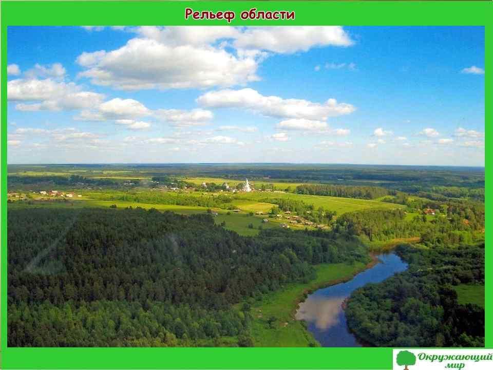 """Проект """"Разнообразие природы Кировской области"""" 3 класс"""